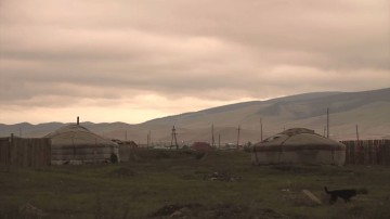 Moja Mongolia
