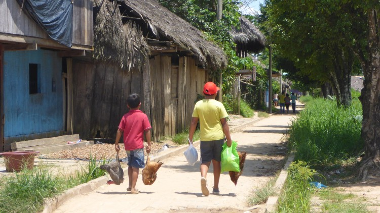 Co skrywa serce Amazonii?