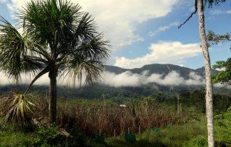 MISYJNE Wielkie Wyprawy – kierunek dżungla amazońska!